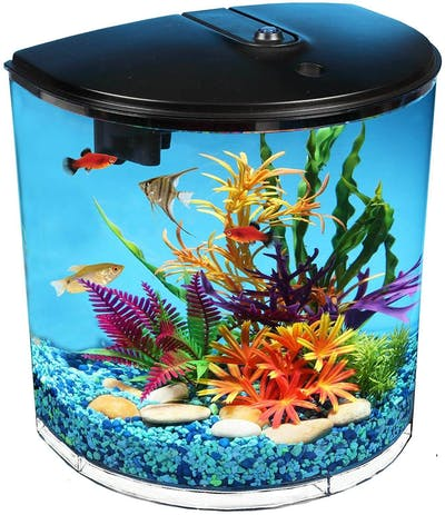 Koller Products IoT Fish Tank